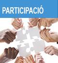 Consells municipals de participació